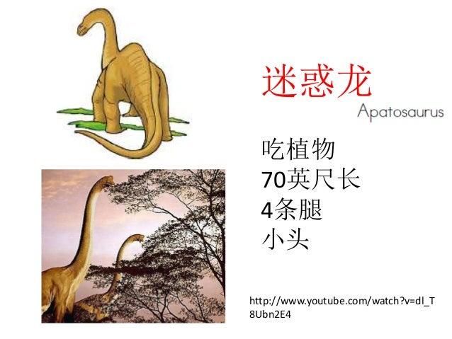 恐龙 Slide 2