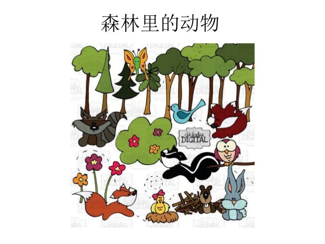 森林里的动物