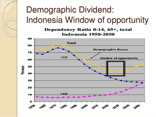 indonesia demographic transition