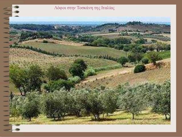 Καλλιέργειες εσπεριδοειδών στην Ελλάδα (Μανταρινιές, Χίος)