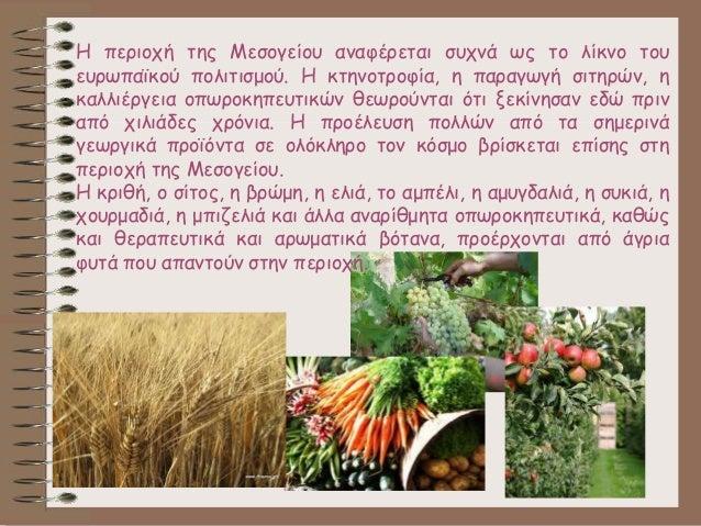 Η περιοχή της Μεσογείου αναφέρεται συχνά ως το λίκνο του ευρωπαϊκού πολιτισμού. Η κτηνοτροφία, η παραγωγή σιτηρών, η καλλι...