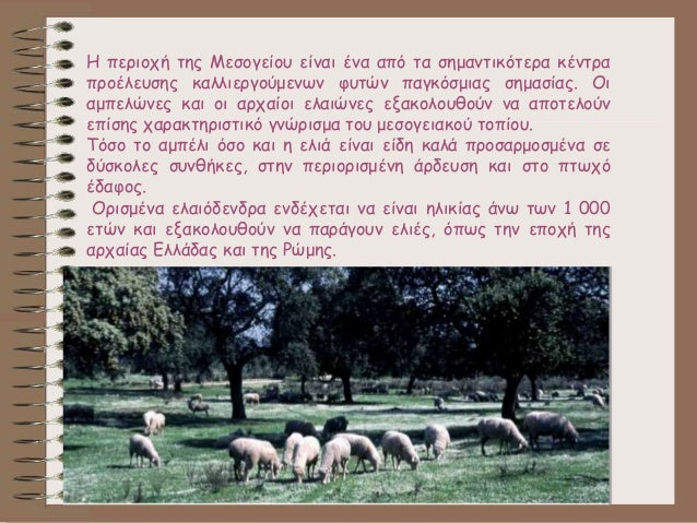 Η περιοχή της Μεσογείου είναι ένα από τα σημαντικότερα κέντρα προέλευσης καλλιεργούμενων φυτών παγκόσμιας σημασίας. Οι αμπ...