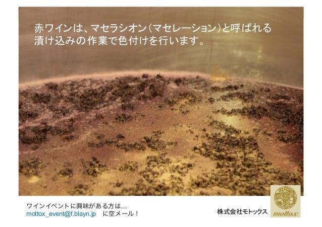 赤ワインは、マセラシオン(マセレーション)と呼ばれる 漬け込みの作業で色付けを行います。 株式会社モトックス ワインイベントに興味がある方は… mottox_event@f.blayn.jpに空メール!