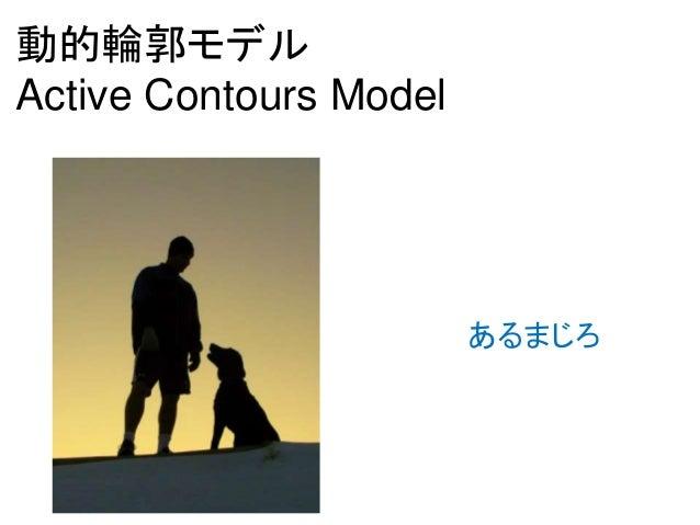動的輪郭モデル Active Contours Model あるまじろ