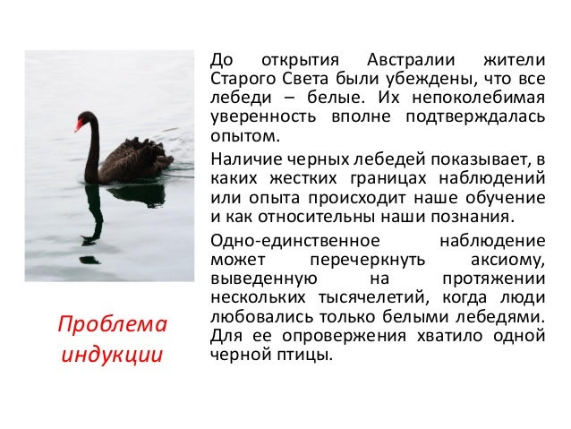 пр идеи и мысли из хорошей книги (черный лебедь) Slide 2