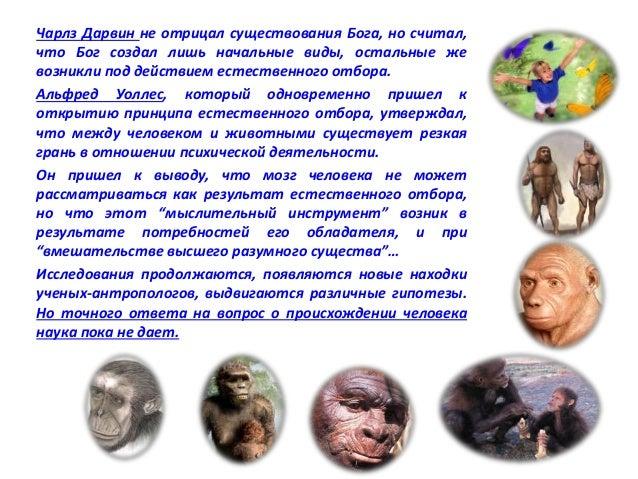 На Земле в настоящее время 7 млрд.человек. Велико  разнообразие народностей! Велико многообразие видов  деятельности, проф...