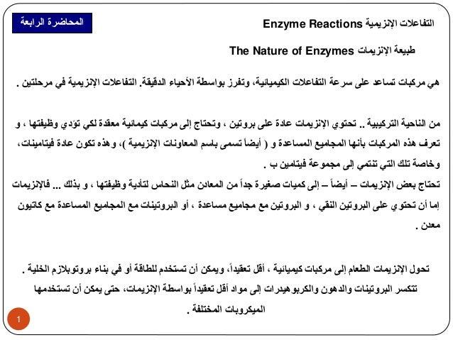 المحاضرة الرابعة Enzyme Reactions التفاعلات الإنزيمية  The Nature of Enzymes طبيعة الإنزيمات  هي مركبات تساعد على سرعة الت...