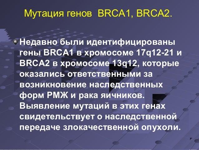 Мутация генов ВRСА1, ВRСА2.  Недавно были идентифицированы  гены ВRСА1 в хромосоме 17q12-21 и  ВRСА2 в хромосоме 13q12, ко...