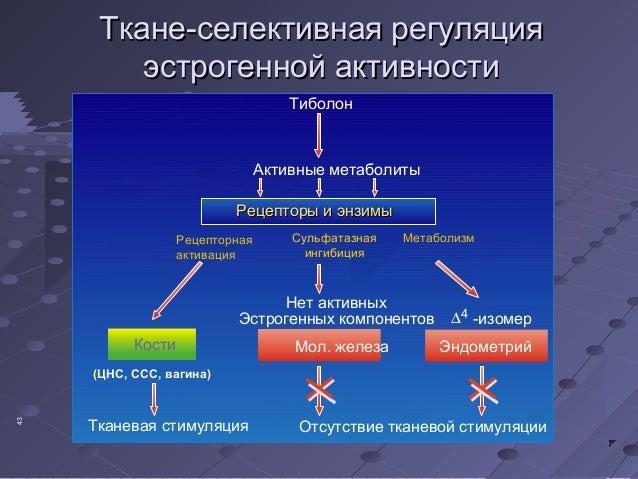 ТТккааннее--ссееллееккттииввннааяя ррееггуулляяцциияя  ээссттррооггеенннноойй ааккттииввннооссттии  Тиболон  Активные мета...