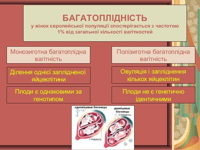 багатоплідна вагітність Slide 2