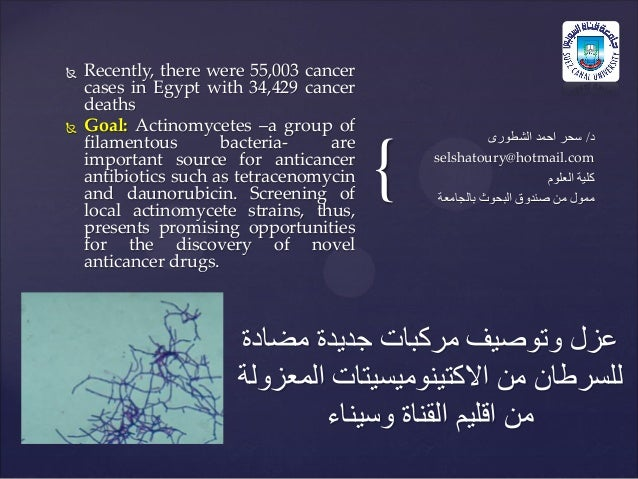 {  Recently, there were 55,003 cancer cases in Egypt with 34,429 cancer deaths  Goal: Actinomycetes –a group of filament...
