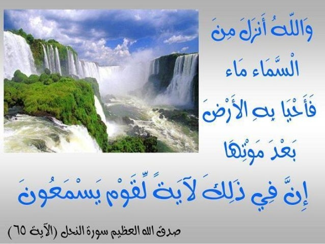 Image result for ‫الماء‬‎