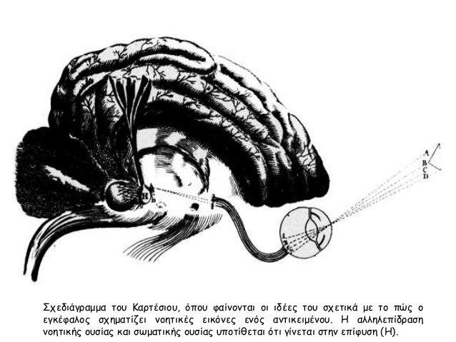 Σχεδιάγραμμα του Καρτέσιου, όπου φαίνονται οι ιδέες του σχετικά με το πώς ο  εγκέφαλος σχηματίζει νοητικές εικόνες ενός αν...
