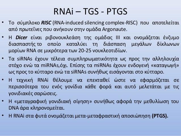 RNAi – TGS - PTGS • Το σύμπλοκο RISC (RNA-induced silencing complex-RISC) που αποτελείται από πρωτεΐνες που ανήκουν στην ο...