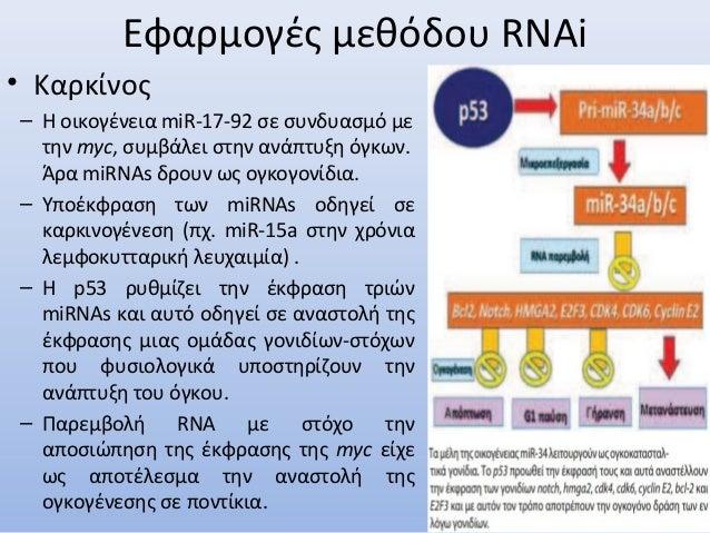 Εφαρμογές μεθόδου RNAi • Καρκίνος – Η οικογένεια miR-17-92 σε συνδυασμό με την myc, συμβάλει στην ανάπτυξη όγκων. Άρα miRN...