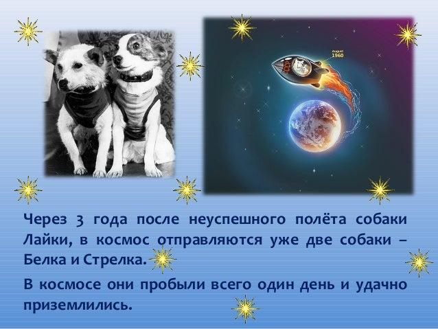 Через 3 года после неуспешного полёта собаки Лайки, в космос отправляются уже две собаки – Белка и Стрелка. В космосе они ...