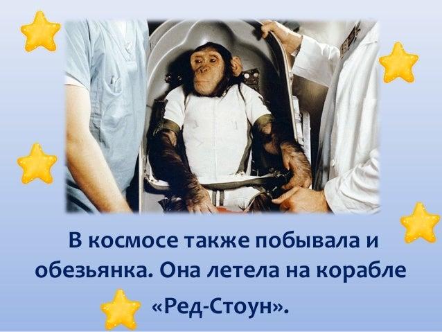 В космосе также побывала и обезьянка. Она летела на корабле «Ред-Стоун».