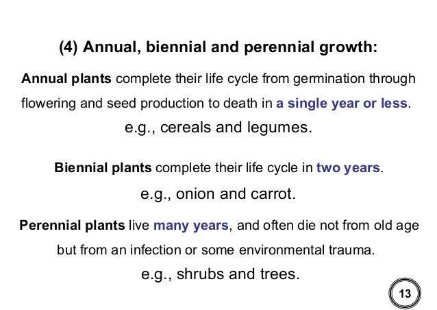 فسيولوجي النمو والتطور