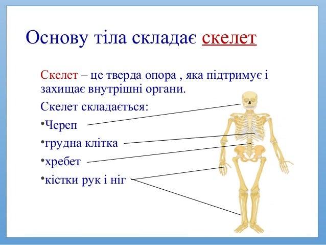 Основи здоров'я 2 клас. Від чого залежить здоров'я Slide 3
