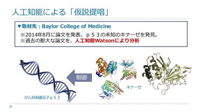 制御 ▼取材先:Baylor College of Medicine ※2014年8月に論文を発表。p53の未知のキナーゼを発見。 ※過去の膨大な論文を、人工知能Watsonにより分析 人工知能による「仮説提唱」 がん抑制遺伝子p53 キナーゼ