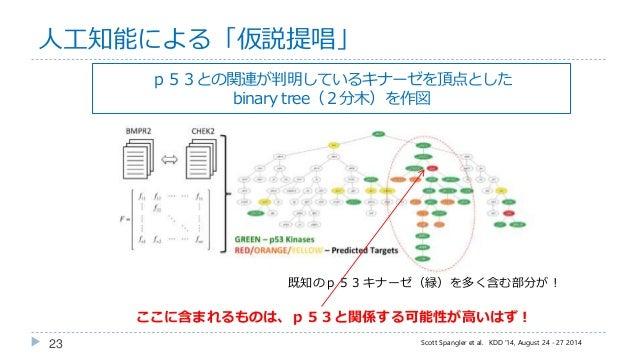 23 人工知能による「仮説提唱」 Scott Spangler et al. KDD '14, August 24 - 27 2014 既知のp53キナーゼ(緑)を多く含む部分が! p53との関連が判明しているキナーゼを頂点とした binary...