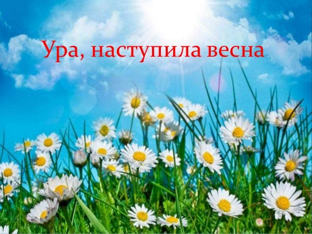 Ура, наступила весна