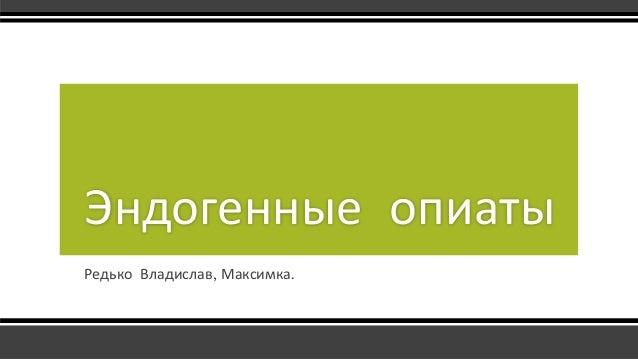 Редько Владислав, Максимка. Эндогенные опиаты