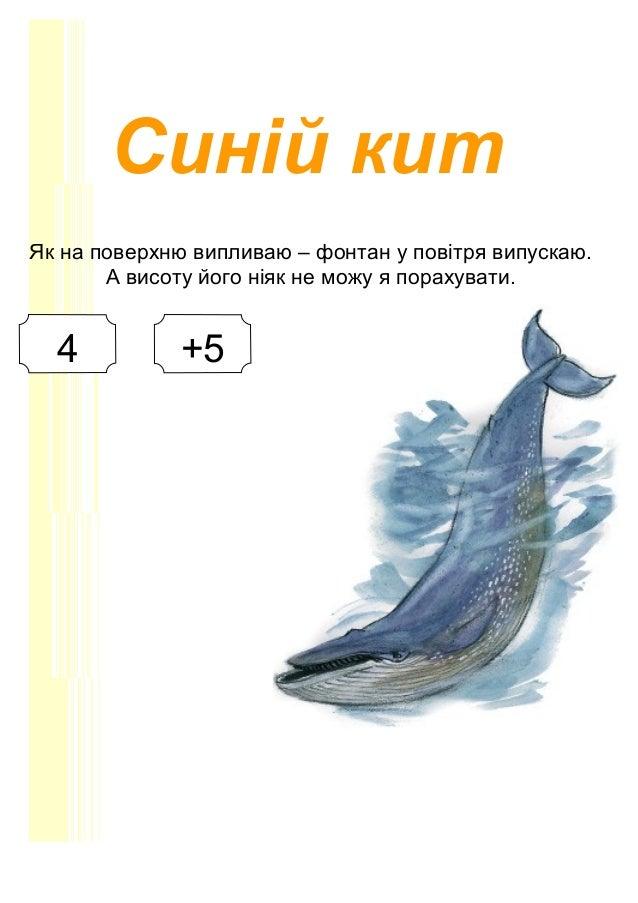 Синій кит Як на поверхню випливаю – фонтан у повітря випускаю. А висоту його ніяк не можу я порахувати. 4 +5