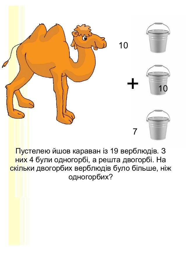 10 + 10 7 Пустелею йшов караван із 19 верблюдів. З них 4 були одногорбі, а решта двогорбі. На скільки двогорбих верблюдів ...