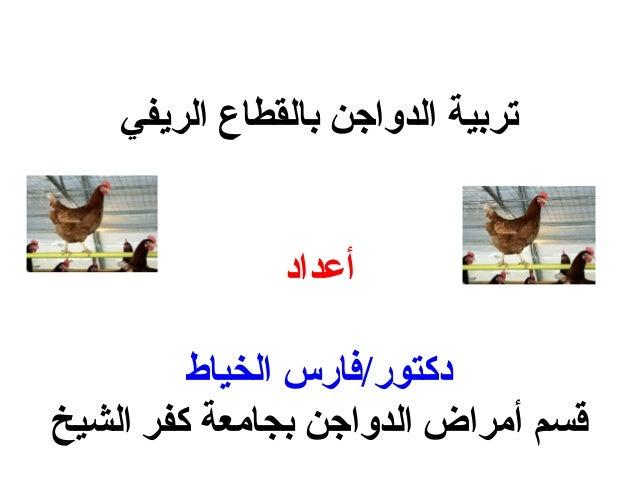 الريفي بالقطاع الدواجن تربية أعداد الخياط دكتور/فارس الشيخ كفر بجامعة الدواجن أمراض قسم