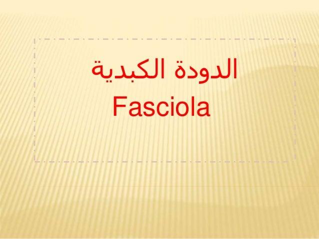 الكبدية الدودة Fasciola