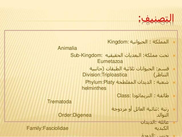 التصنيف: المملكة:الحيوانيةKingdom: Animalia مملكة تحت:الحقيقيه البعدياتSub-Kingdom: Eumetazoa قسم:الطب...