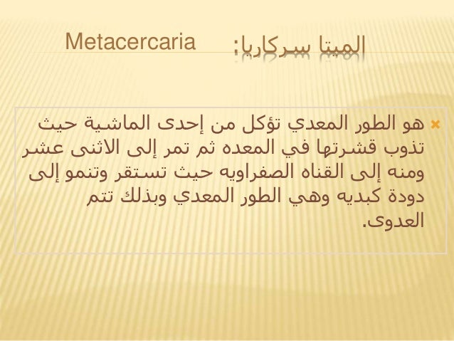 سركاريا الميتا: حيث الماشية إحدى من تؤكل المعدي الطور هو ع االثنى إلى تمر ثم المعده في ...