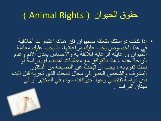 انحيىان حمىق(Animal Rights) •أخالقٌة اعتبارات هناك فإن بالحٌوان متعلقة دراستك كانت إذا علٌك ٌجب ...