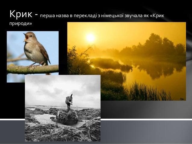 Крик - перша назва в перекладі з німецької звучала як «Крик природи»