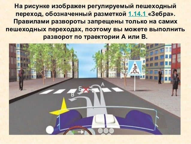 На рисунке изображен регулируемый пешеходный переход, обозначенный разметкой 1.14.1 «Зебра». Правилами развороты запрещены...