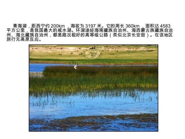 环青海湖自行车行攻略 Slide 2
