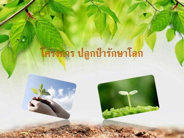 หลักการและเหตุผล เนื่องจากโลกปัจุบันนั้นเริ่มมีอุณภูมิที่เพิ่มขึ้นมากทุกปี และมีการใช้ต้นไม้มากขึ้น ปี เช่น การไม้นามาทาที...