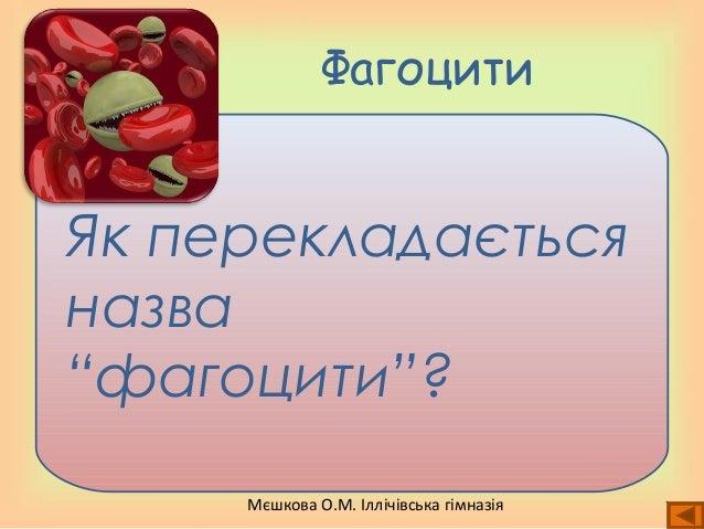 """Мєшкова О.М. Іллічівська гімназія Фагоцити Як перекладається назва """"фагоцити""""?"""