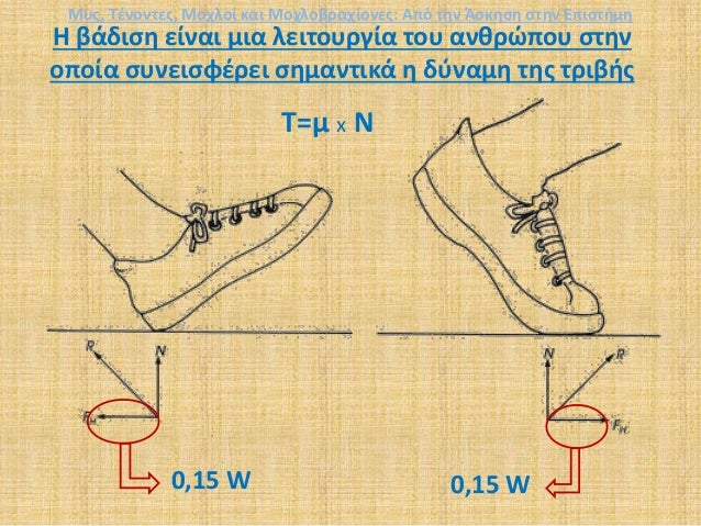 Η βάδιση είναι μια λειτουργία του ανθρώπου στην οποία συνεισφέρει σημαντικά η δύναμη της τριβής 0,15 W T=μ x N 0,15 W Μυς,...
