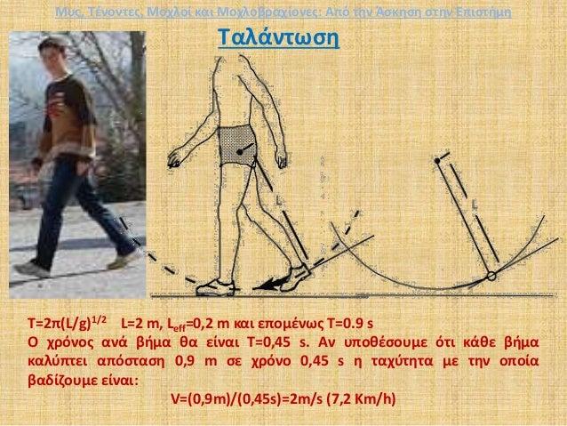 Ταλάντωση Τ=2π(L/g)1/2 L=2 m, Leff=0,2 m και επομένως T=0.9 s Ο χρόνος ανά βήμα θα είναι Τ=0,45 s. Αν υποθέσουμε ότι κάθε ...