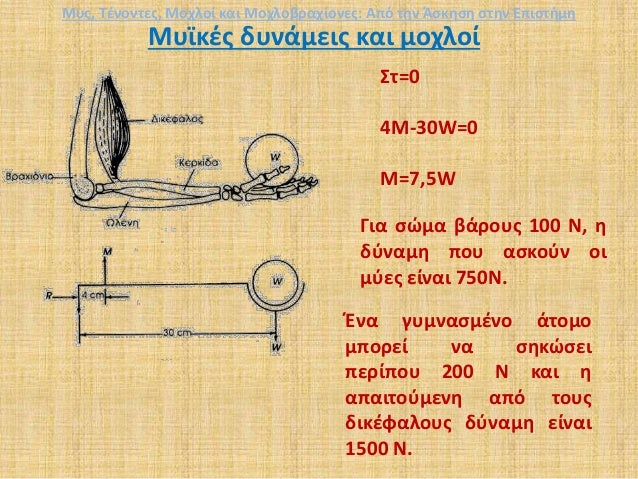 Μυϊκές δυνάμεις και μοχλοί Στ=0 4Μ-30W=0 M=7,5W Για σώμα βάρους 100 Ν, η δύναμη που ασκούν οι μύες είναι 750Ν. Ένα γυμνασμ...