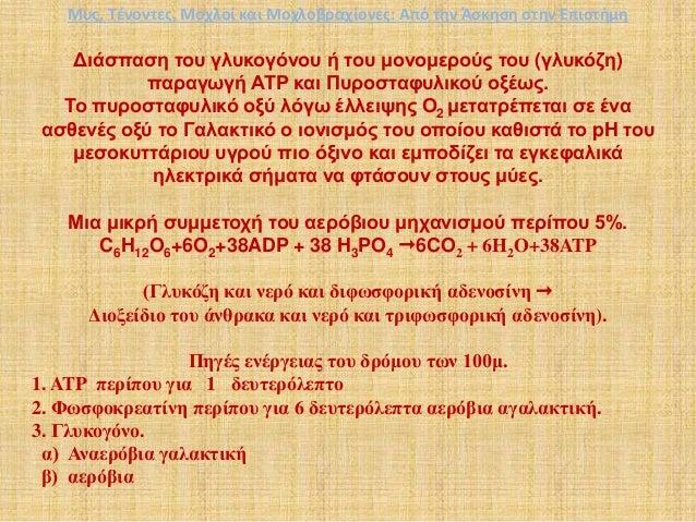 Διάσπαση του γλυκογόνου ή του μονομερούς του (γλυκόζη) παραγωγή ΑΤΡ και Πυροσταφυλικού οξέως. Το πυροσταφυλικό οξύ λόγω έλ...