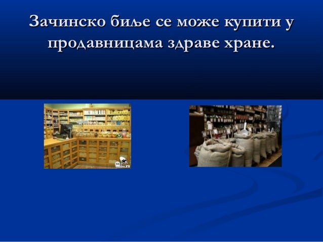 У припреми јела се користе:У припреми јела се користе: ПАСУЉ - першун, жалфија, мајчина душица,ПАСУЉ - першун, жалфија, ма...
