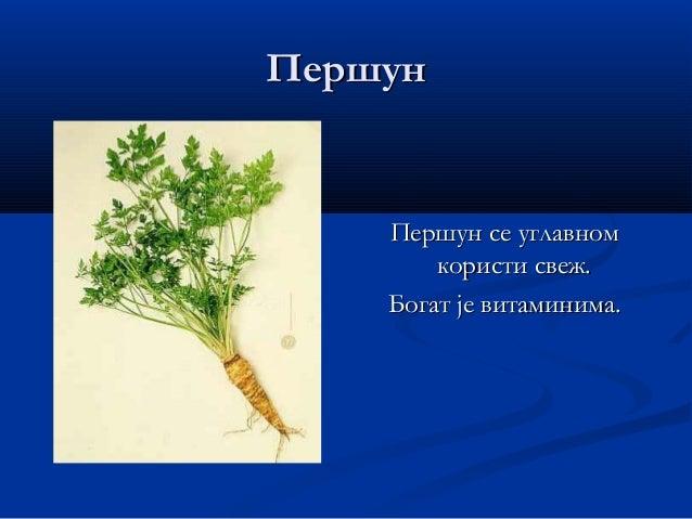 ЦелерЦелер Користи се лист и коренКористи се лист и корен као додатак супама икао додатак супама и чорбама.чорбама.