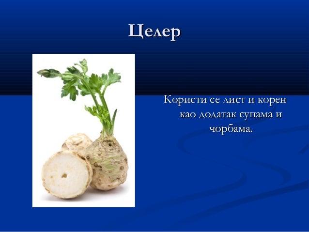 РенРен Употребљава се корен.Употребљава се корен. Има оштар и љут укус.Има оштар и љут укус.