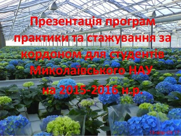 Презентація програм практики та стажування за кордоном для студентів Миколаївського НАУ на 2015-2016 н.р.