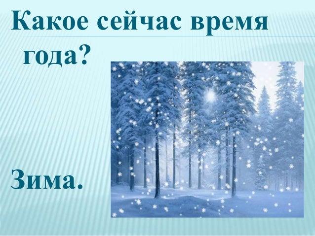 Какое сейчас время года? Зима.