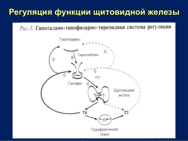 download Biochemistry,