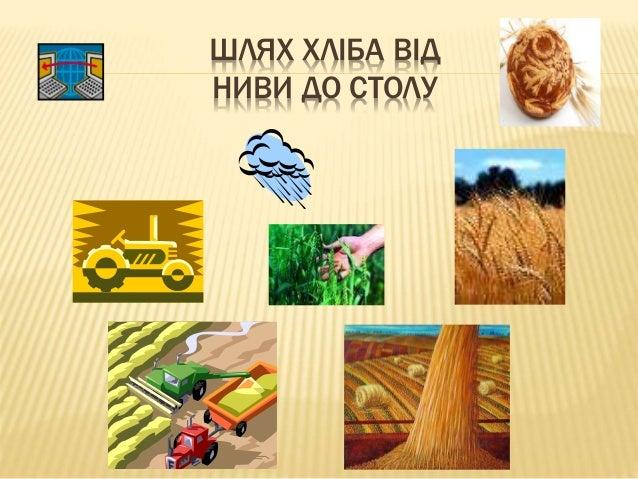 Зневажливе ставлення до хліба фото фото 144-224